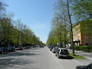 Frühling auf der Nymphenburgerstrasse